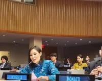 Дэд сайд С.Мөнгөнчимэг НҮБ-ын Нийгмийн хөгжлийн хорооны 58 дугаар чуулганд оролцлоо