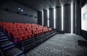Кино урлагийг хөгжүүлэх тухай хуулийн төслийг дэмжив