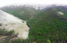 Ноён уул орчмын газрын тусгай хамгаалалтыг өргөтгөж, дархан цаазтай болгоно