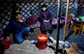 Завхан аймгийн өвөлжилт хүндэрсэн нутгийн малчдад 883 тн өвс үнэ төлбөргүй олгоно