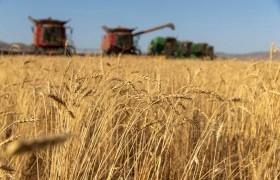З.Мэндсайхан: Ургац хураалтад 11.1 мянган хүн хөдөлмөрийн түр гэрээгээр ажиллаж байна