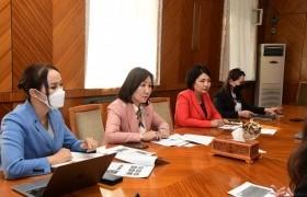 УИХ-ын эмэгтэй гишүүд НҮБ-ын Хөгжлийн хөтөлбөрийн суурин төлөөлөгч Илейн М. Конкиевич болон төслийн багийг хүлээн авч уулзлаа