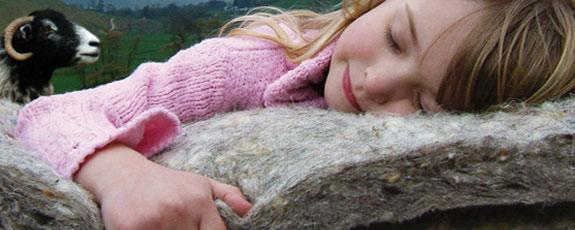 Эрчим хүч хэмнэхэд хонины ноос тусална