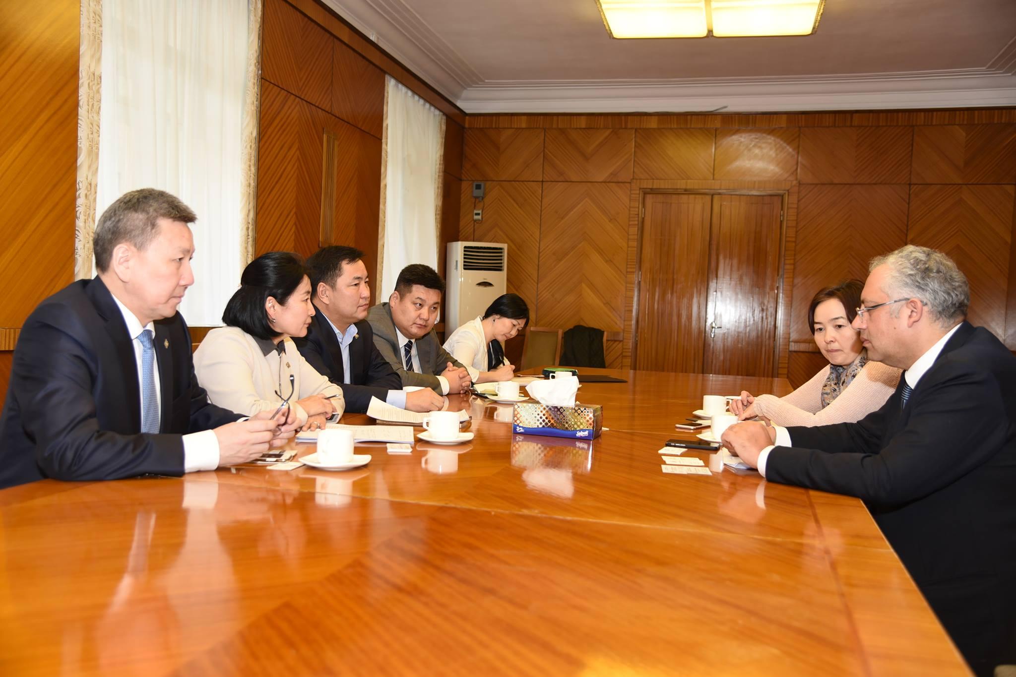 Ардчилсан намын бүлгийн гишүүд ОУВС-ийн Монгол дахь суурийн төлөөлөгчтэй уулзлаа