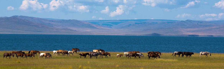 Отгонтэнгэр, Хан Хэнтий, Онон Балж зэрэг улсын тусгай хамгаалалттай газар нутгийн дэд бүтцийг хөгжүүлнэ
