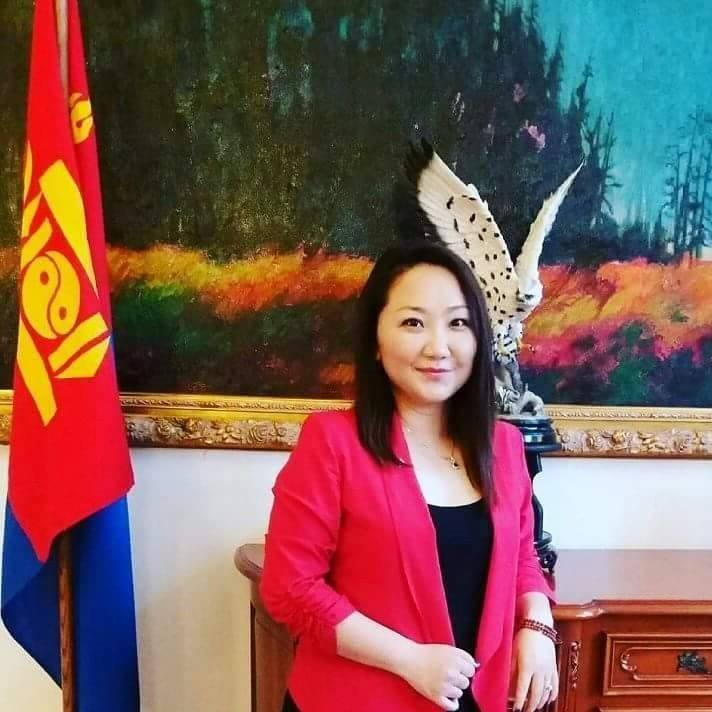 Н.Солонго: Монголд эрүүл улс төр дутагдаж байна