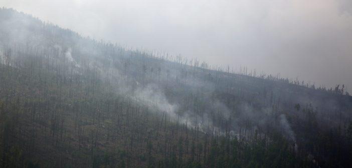Түймрийн нөхцөл байдал: Нийт 9 түймэр асч, 5 түймэр цурманд ороод байна