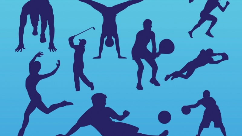 Үндэсний спортын их наадмыг энэ жил зохион байгуулна