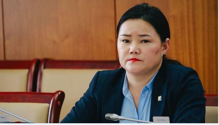 Н.Амарзаяа: Монголын ирээдүйн хувь заяатай холбоотой гэрээг шалгах нь маш том үүрэг хариуцлага