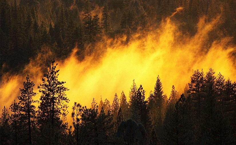 Сэлэнгэ аймгийн Ерөө суманд гарсан түймрийг унтраалаа