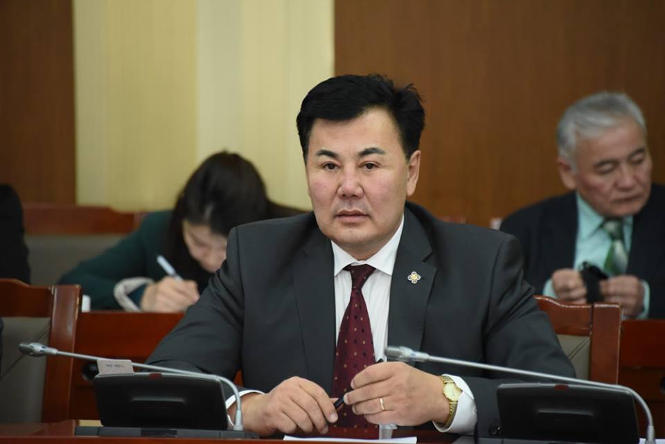 Б.Баттөмөр: Монгол хөгжилд төрийн оновчтой зохицуулалт дутагдаж байна