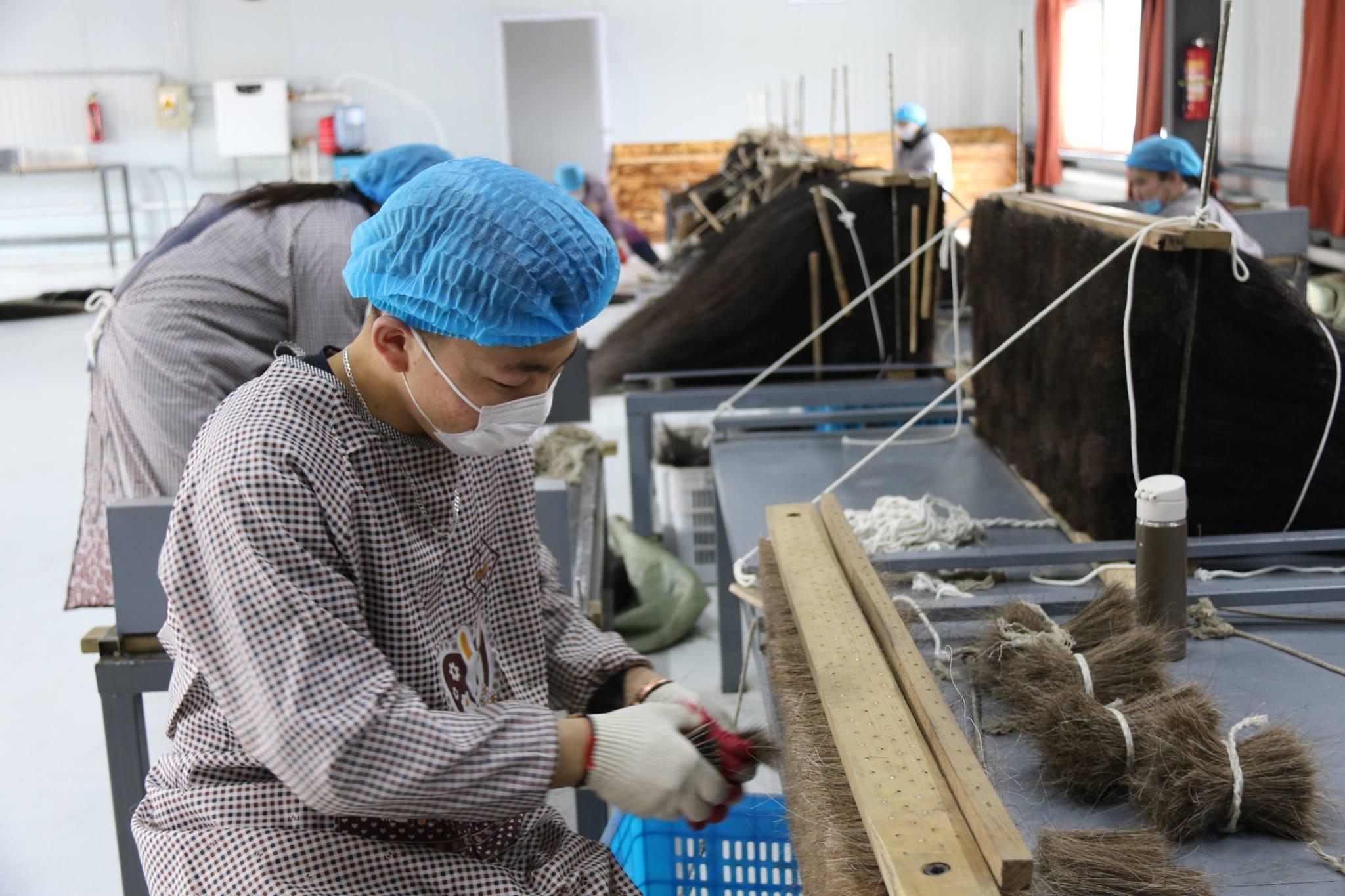 Монгол адууны дэл, сүүл, сарлагийн саваг, тэмээний эр ноосыг боловсруулан экспортод гаргах үйлдвэр ашиглалтанд орлоо