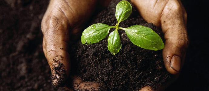 Хөрс хамгаалах, газрын доройтлыг  бууруулах үндэсний хөтөлбөр баталлаа