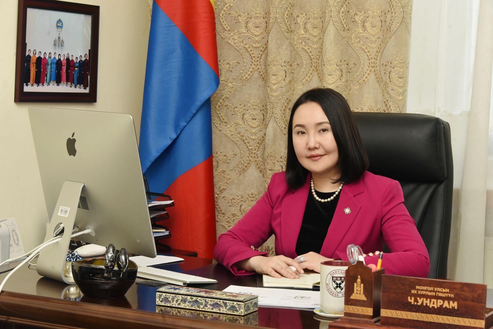 Ч.Ундрам: Монгол Улс анх удаа Музейн тухай хуультай болно