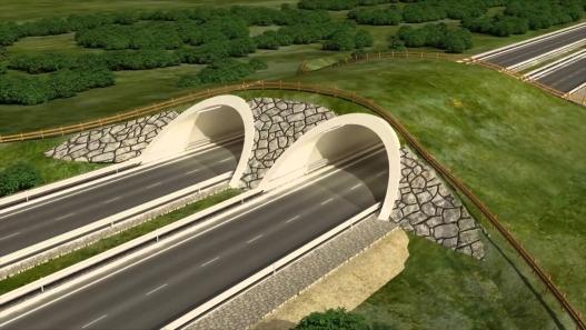 УБ-Эрдэнэт хотыг шууд холбох хурдны зам, хурдны галт тэрэг төсөл эхлүүлнэ