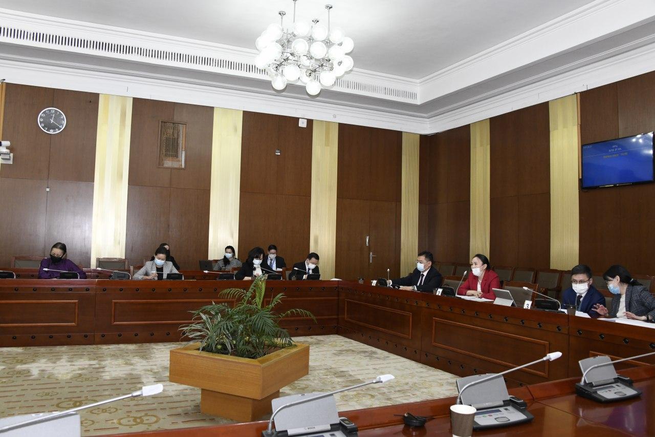 Жендэрийн эрх тэгш байдлыг хангах үйл ажиллагааны хэрэгжилт үр, дүнгийн талаар Монгол Улсын Засгийн газрын тайланг хэлэлцэв