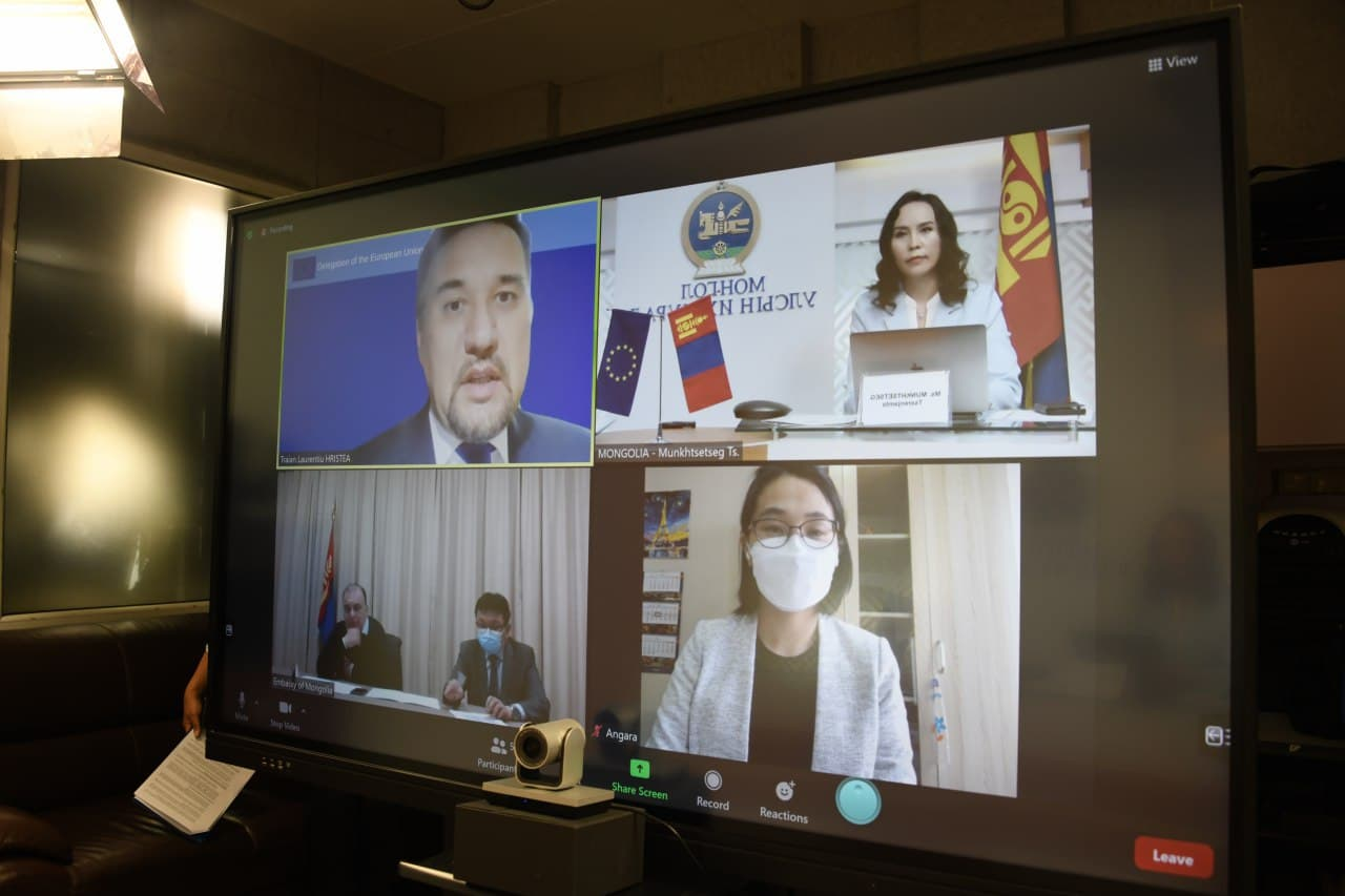 УИХ-ын гишүүн Ц.Мөнхцэцэг Европын Парламентын Төв Ази, Монгол Улстай харилцах бүлгийн даргатай цахим уулзалт хийлээ